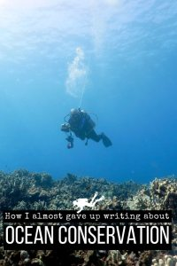 How I almost gave up writing about ocean conservation