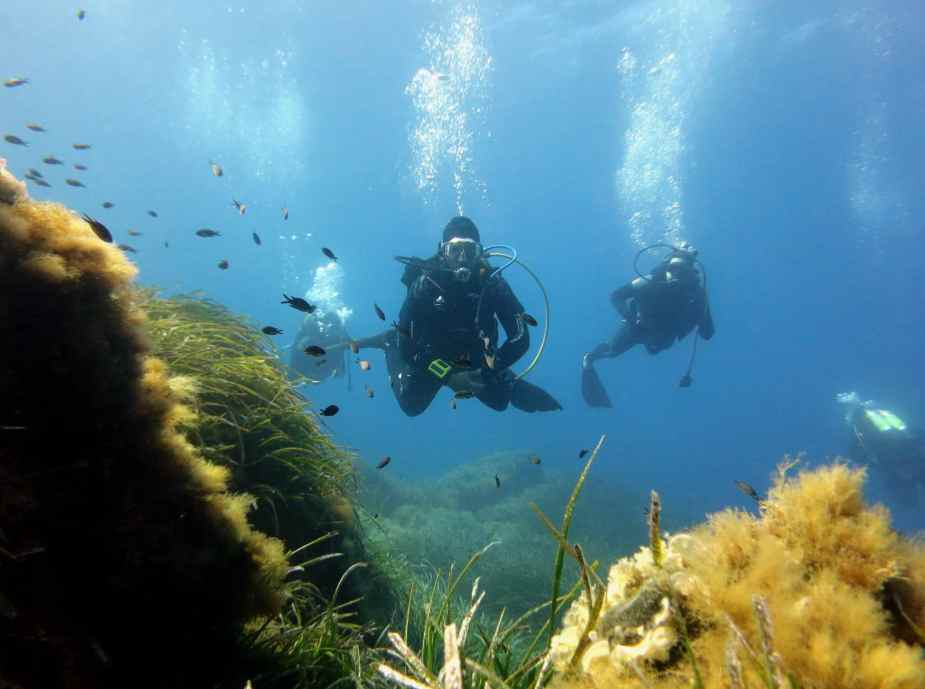 Scuba diving in Port-Cros National Park France