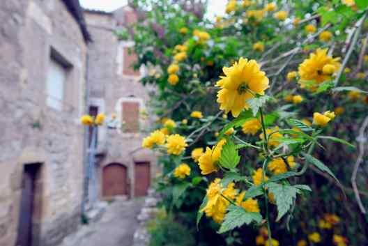 Saint-Eulalie-de-Cernon village Aveyron France