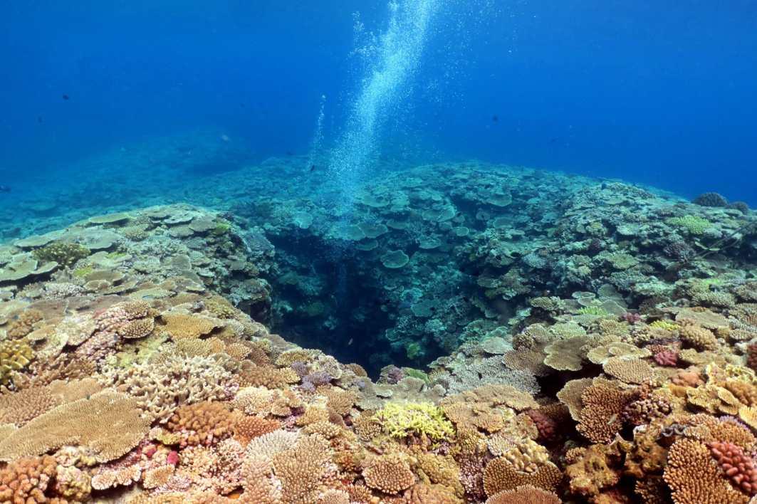 Scuba diving Manza Dream Hole Okinawa Japan