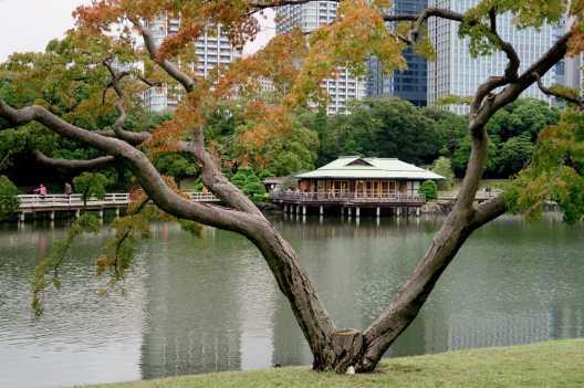Hamarikyu Imperial Gardens Tokyo Japan