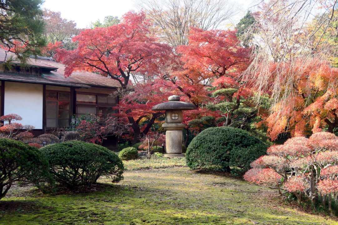 Koishikawa Korakuen Garden Tokyo Japan