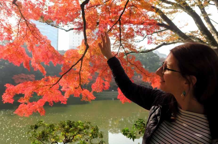 Momiji Koishikawa Garden Tokyo Japan