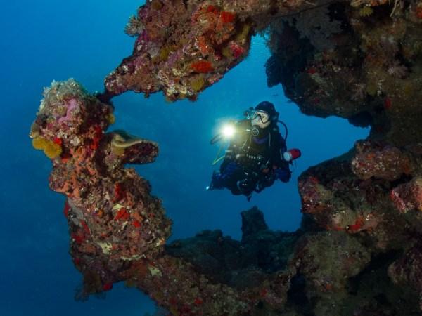 Florine diving Hienghene New Caledonia