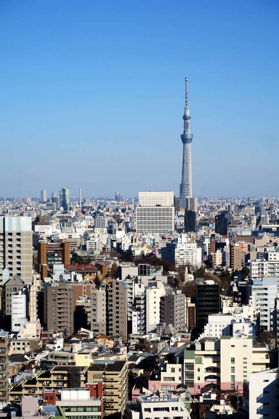 View of SkyTree from Bunkyo Civic Center Tokyo Japan