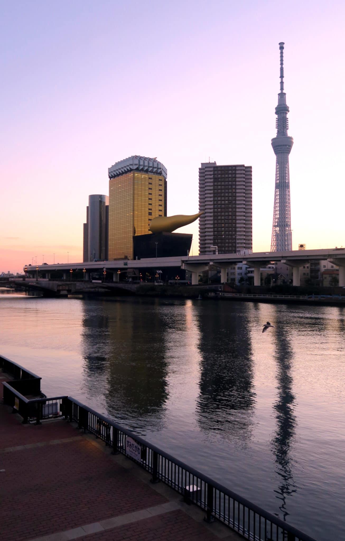 Tower Tower at dawn