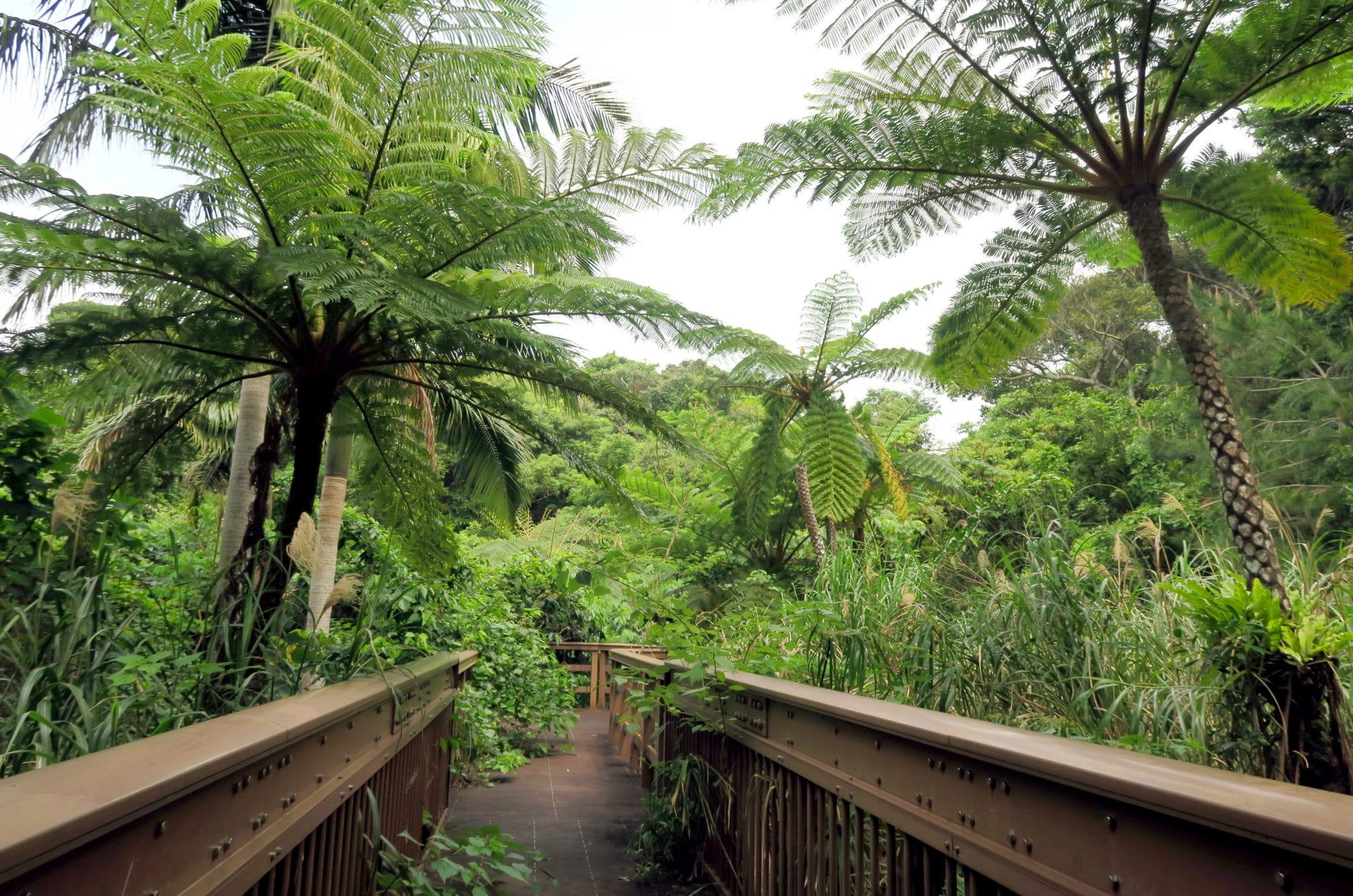 Banna Park Ishigaki Okinawa Japan