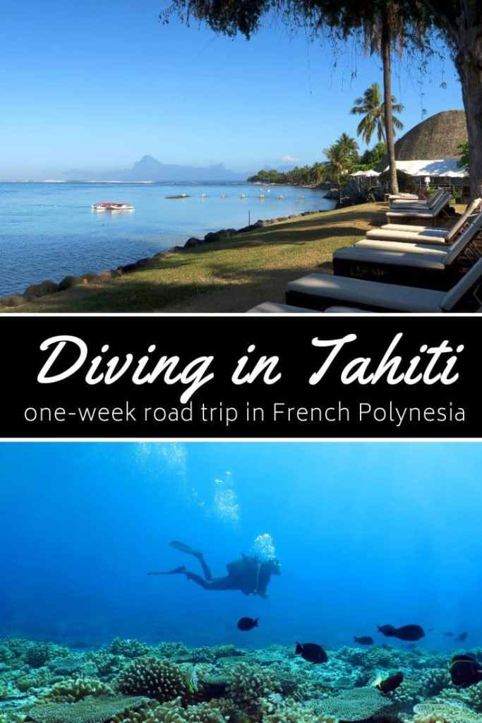 Diving in Tahiti French Polynesia