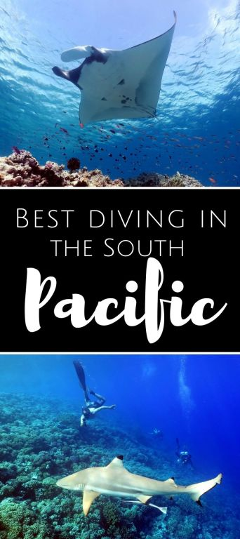Best diving South Pacific pin1