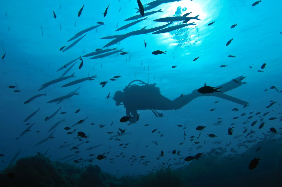 How to take pictures underwater - scuba diver silhouette