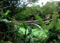 Bohol countryside Sipatan hanging bridge Chocolate hills Philippines