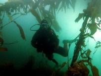my diving equipment Ushuaia Argentina