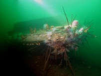 Speed boat wreck Scuba diving St Cats Loch Fyne Scotland