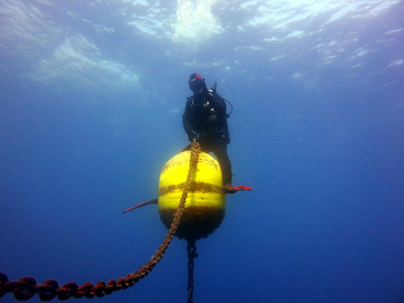 scuba diving in Portofino with Massub Italy