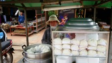 Steamed meat buns! I love them everywhere I find them.