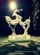 moonlit courtship