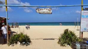 Welcome to Puka Shell Beach!