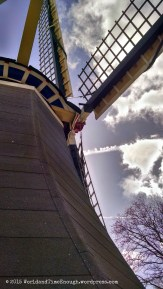 Of course, this is the Netherlands--here's a windmill too!