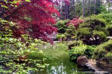 The Nishinomiya Tsutakawa Japanese Garden inside Manito Park in Spokane.