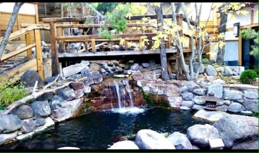 Small waterfall and koi pond.