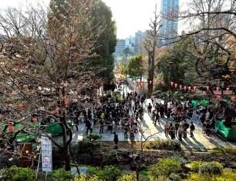 Ueno Park as viewed from Kiyomizu Kannon-do.