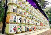 Barrels of sake donated to Meiji Shrine.