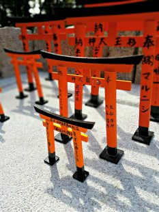 Small models of torii.