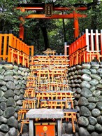 Tiny torii as offerings to Inari.