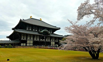 The Great Hall of Todaiji from afar.