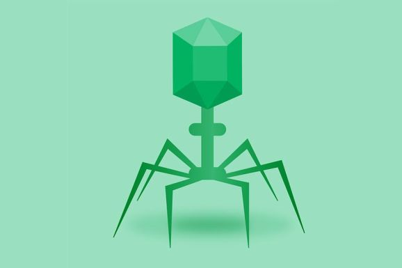 bacteriophage phage therapy, Image by neo tam from Pixabay