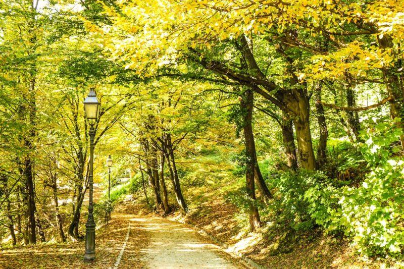 der slowenische Herbst