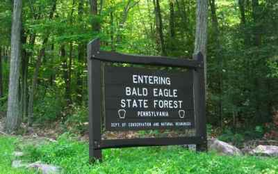 Bald Eagle State Forest Dual Sport Motorcycle Trails