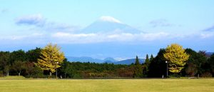 Mt. Fuji from Su-Za