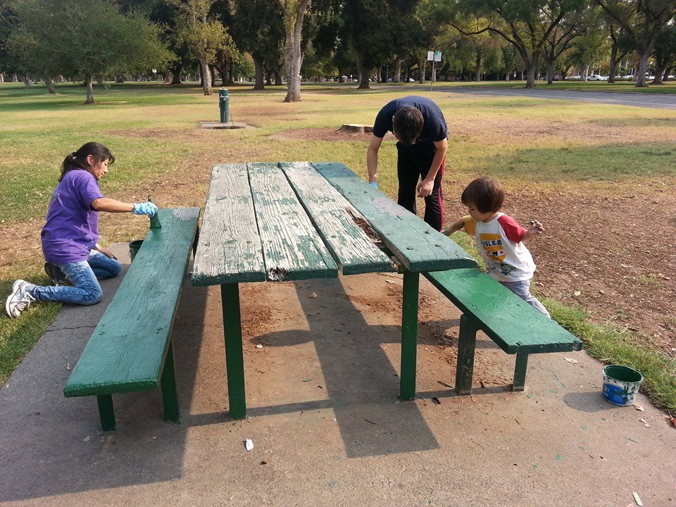 Volunteer Activity at local Park