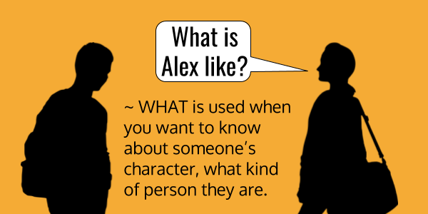What is Alex like? English Grammar - HOW vs. WHAT