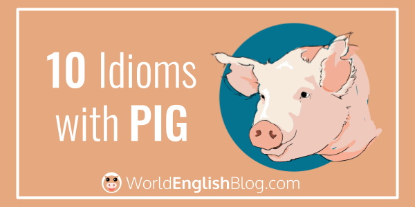 10 Idioms with PIG