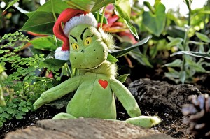 Image of the Grinch