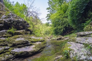 Landscape around Vrmdza