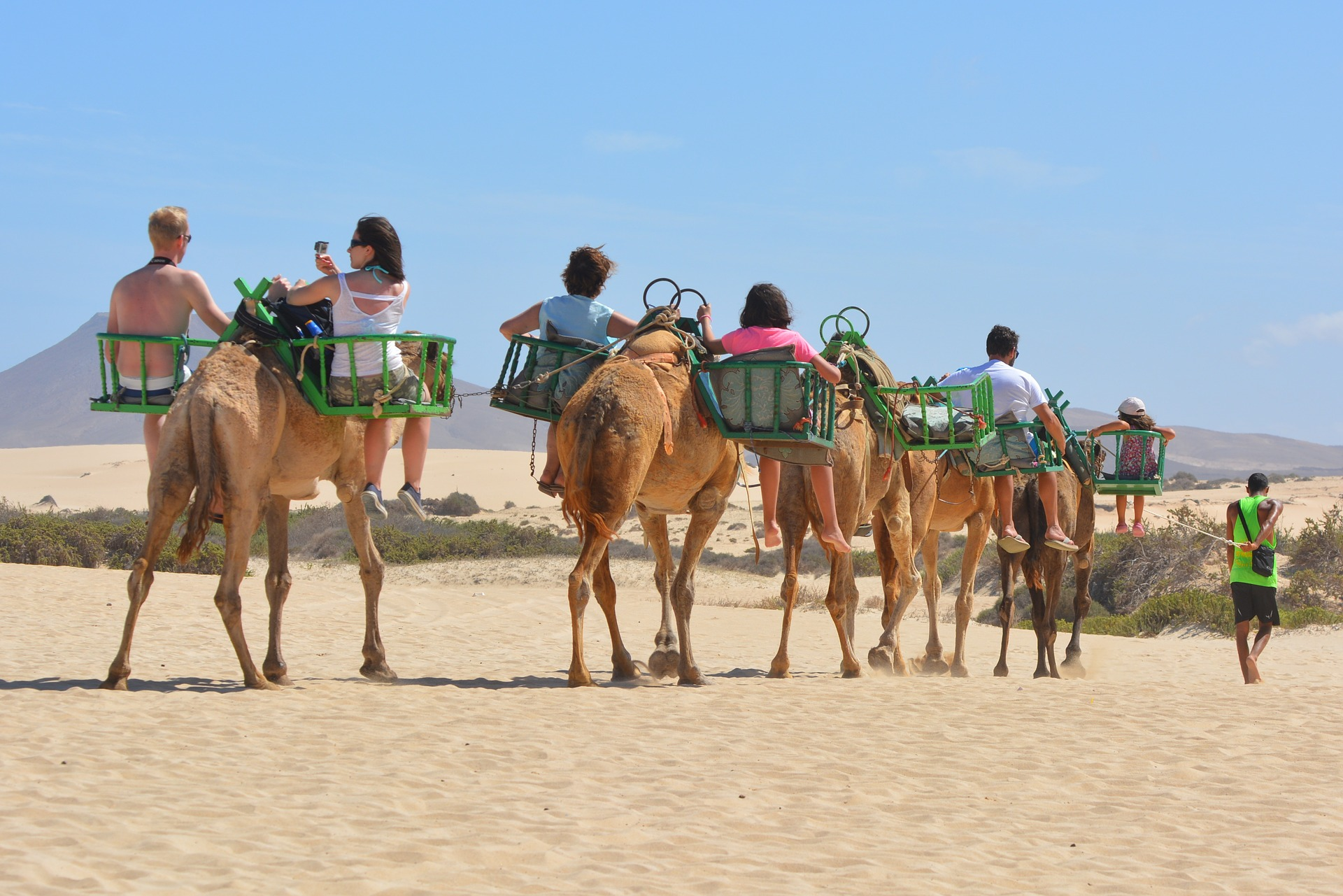 This camel tour is an example of extreme use of these animals.