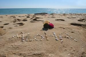 Hawaii beach with Aloha greeting