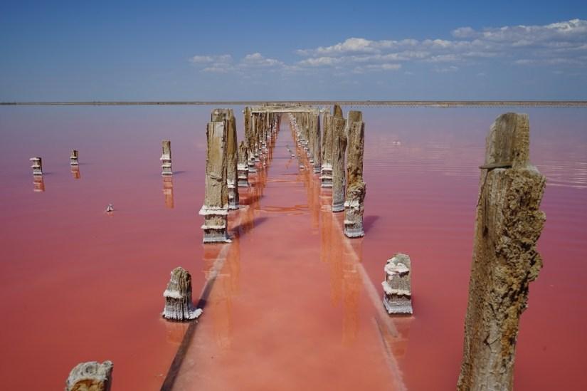 Pink Lake. Photo: Alona Tiunina