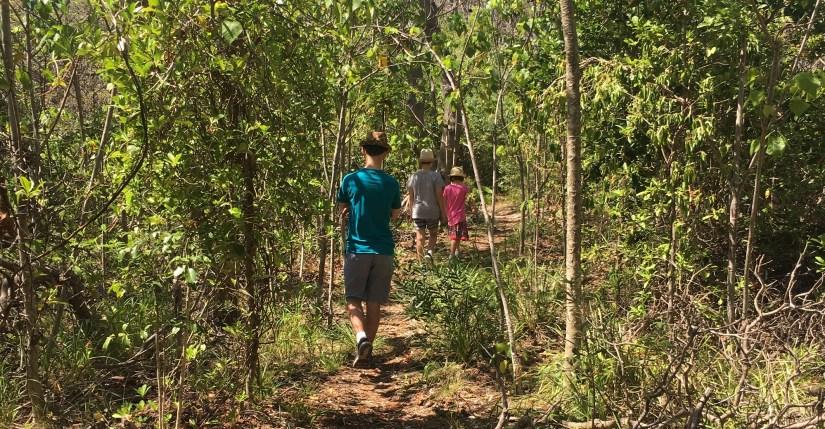 Along the Bush Tucker Trail. Photo: Ann-Marie Cahill