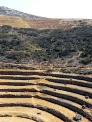 Moray Sector II