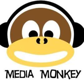 MediaMonkey Gold 4.1.31.1919 Free Download