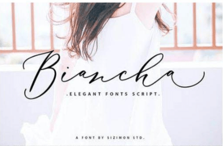 Creative Fonts Pack [June-2020] 23 Fonts Free Download