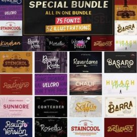 Special Bundle All in One Bundle 75 Fonts 52 Illustrations Free Download