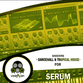 Vandalism Shocking Dancehall And Tropical House For XFER RECORDS SERUM-DISCOVER (premium)