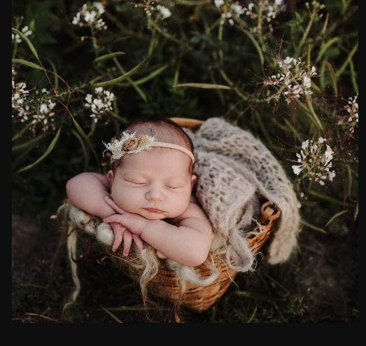 Twig & Olive Photography – Newborn Prop Shopping | Feature