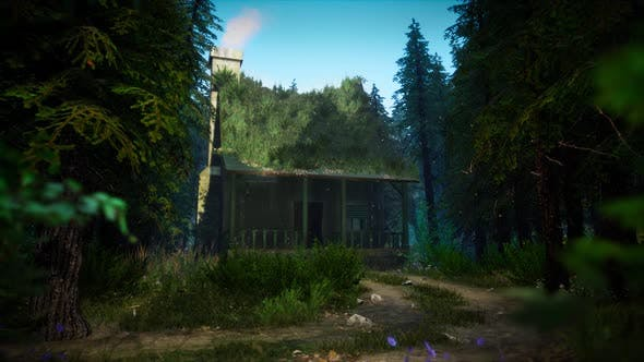 Videohive Cabin In A Dark Forest Looped Hd 33528104 Free Download