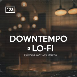 Bingoshakerz Downtempo and Lo-Fi (Premium)
